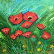 Poppy Field by Pam Dodd