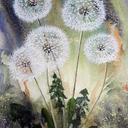 Dandelion Clocks by Lindsay Gregory