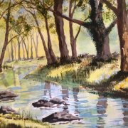 A Woodland Stream by Micky Tomlin