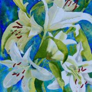 White Lilies by Tracy Dudley